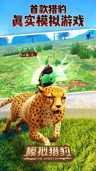模拟猎豹截图