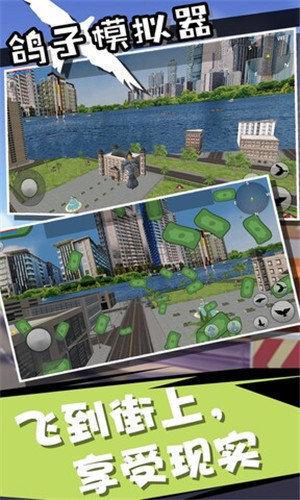 鸽子模拟器2020手游下载-鸽子模拟器2020安卓版下载