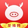 龙猪网app
